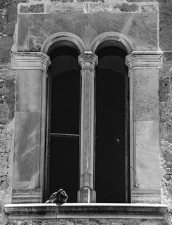 Bild von  Bellver Castle in der Nähe von  Palma De Mallorca. 2 castle canon de photography eos rebel spring kiss mark may mai ii mallorca palma château cristian castillo mk castel majorca castell bellver castelldebellver primavara 500d maiorca замок 섬 2013 bortes майорка востраў bortescristian cristianbortes x3l マヨルカ島 t1i 馬略卡島 मायोर्का מיורקה 마요르카 ميورقة мальёрка مایورکا maļorka 贝利韦尔城堡 бельвер