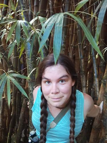 Kaua'i : Bamboo BOO!