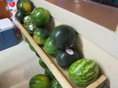 watermelon IMG_5900