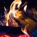 Campfire by josephkleinkopf