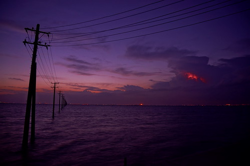 utility poles into the sea 23