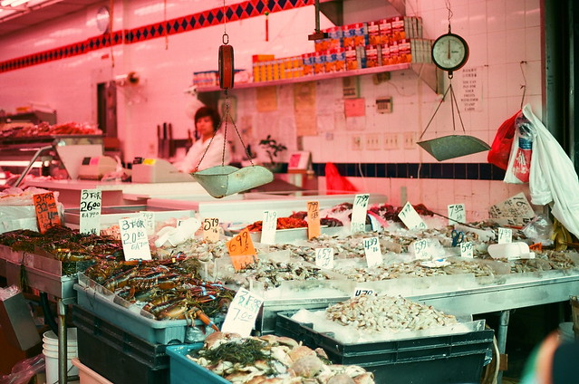 Fish Shop in Pink