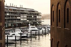 Walsh Bay Sydney Walking Tour