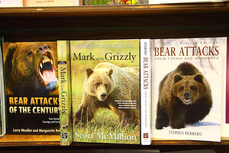IMG_4294 Grizzly Bear Books
