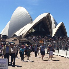 The Opera House this morning International_fleet_review