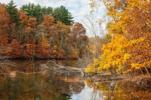autumn fall water canon landscape scenic reservoir foliage katonah westchestercounty