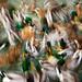 A Golumphing Gaggle of Ducks by gcquinn
