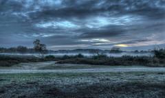 2013 11 28 Westerheide Twilight