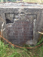 Photo of Stone plaque number 29992