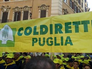 Manifestazione Coldiretti a Montecitorio (5)