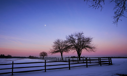 light moon snow sunrise purple