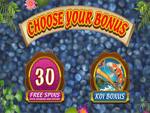 free Lucky Koi slot Feature