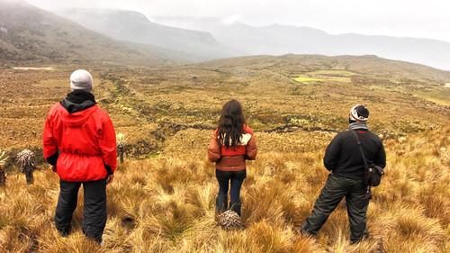 colombia valle hdr nevado frailejon nevadodeltolima