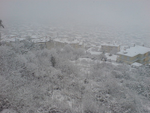 snow veria