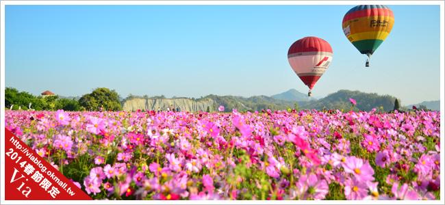 台南冬季熱氣球嘉年華會~花海加熱氣球,美翻了!