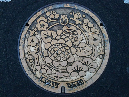 Anan Tokushima, manhole cover 2 (徳島県阿南市のマンホール2)