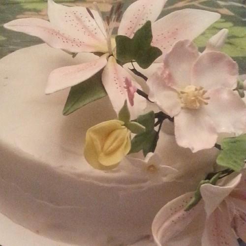 Izzy's latest cake