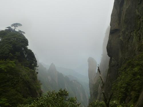 Jiangxi-Sanqing Shan-3 sentier du soleil (100)