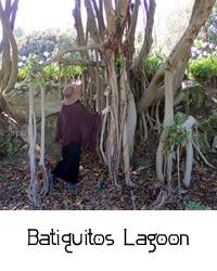 Batiquitos