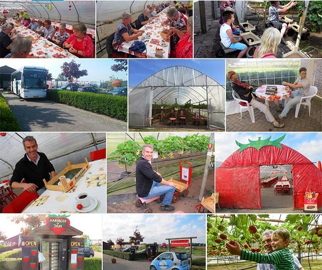 RijsbergenAardbeienterras-2016-1-collage