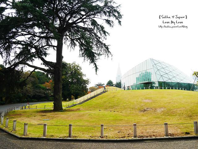 日本東京景點新宿御苑溫室植物 (1)