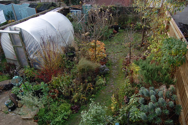 Looking Down on the Back Garden (new fence) - November 2016