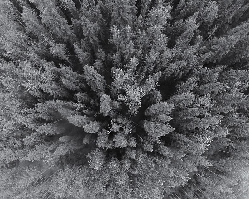 IMAGE: http://farm6.staticflickr.com/5472/9071555471_fccfeee900_c.jpg