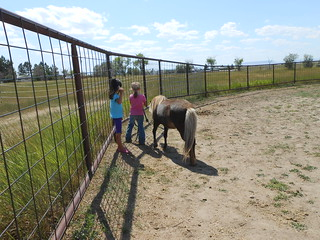 Horse Lessons 22July13 (1)