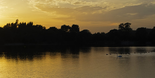 bridge sunset sky lake golden swan ducks keynes neigh somerford pentaxk5