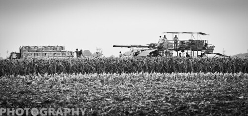 Day at the Farm B&W by Ricky L. Jones Photography