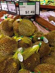 sunflower seed(0.0), flower(0.0), plant(0.0), flora(0.0), crop(0.0), vegetarian food(1.0), green(1.0), produce(1.0), fruit(1.0), food(1.0), durian(1.0), jackfruit(1.0),