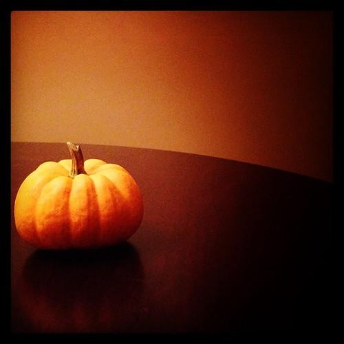 #fmsphotoaday October 18 - Still