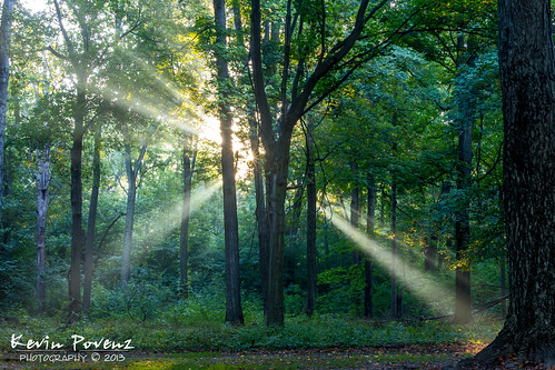 park morning trees light sun sunrise early michigan ottawa september sunbeams jesusrays westmichigan jenison 2013 kevinpovenz ottawacountyparks