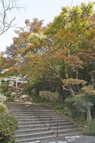 【写真】2013 紅葉 : 日向大神宮/2020-10-05/IMGP3368
