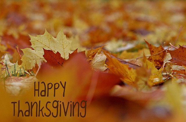 Happy Thanksgiving! by shesnuckinfuts, on Flickr