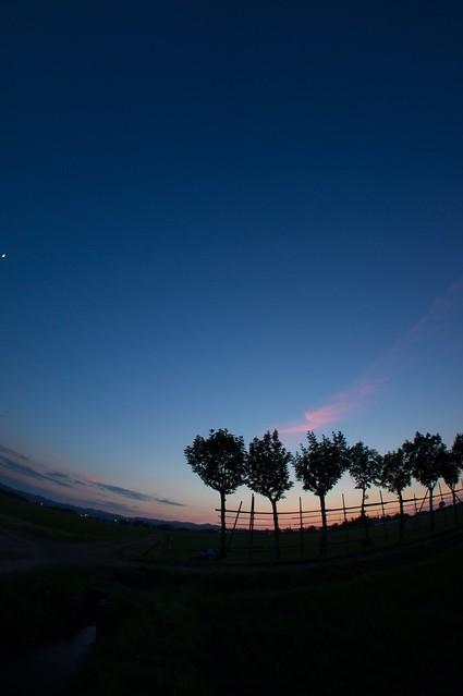 写真_月が眺めるもの2