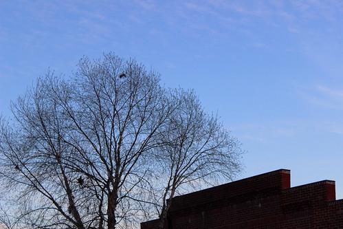 sunset sky building tree up st virginia mainstreet looking dusk main va gloucester mainst gloucesterva