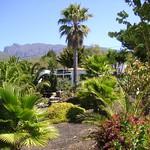 Blick in den Garten von La Luna Baila, La Palma