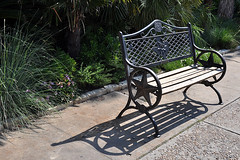 San Antonio - A Star on a Bench