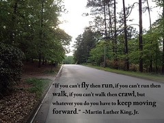 Quote Martin Luther King Jr Fly Run Walk Crawl If You Flickr