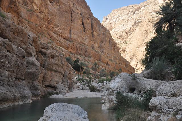 Wadi Shab (17)