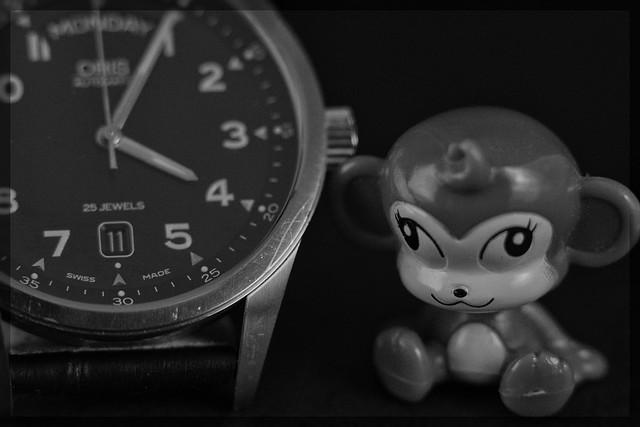 Watch & Monkey