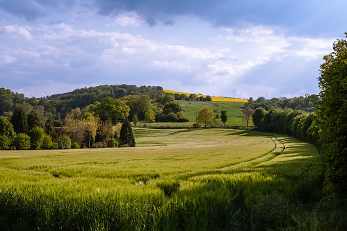 spring_valley