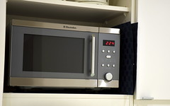 kitchen stove(0.0), kitchen appliance(1.0), microwave oven(1.0), home appliance(1.0),