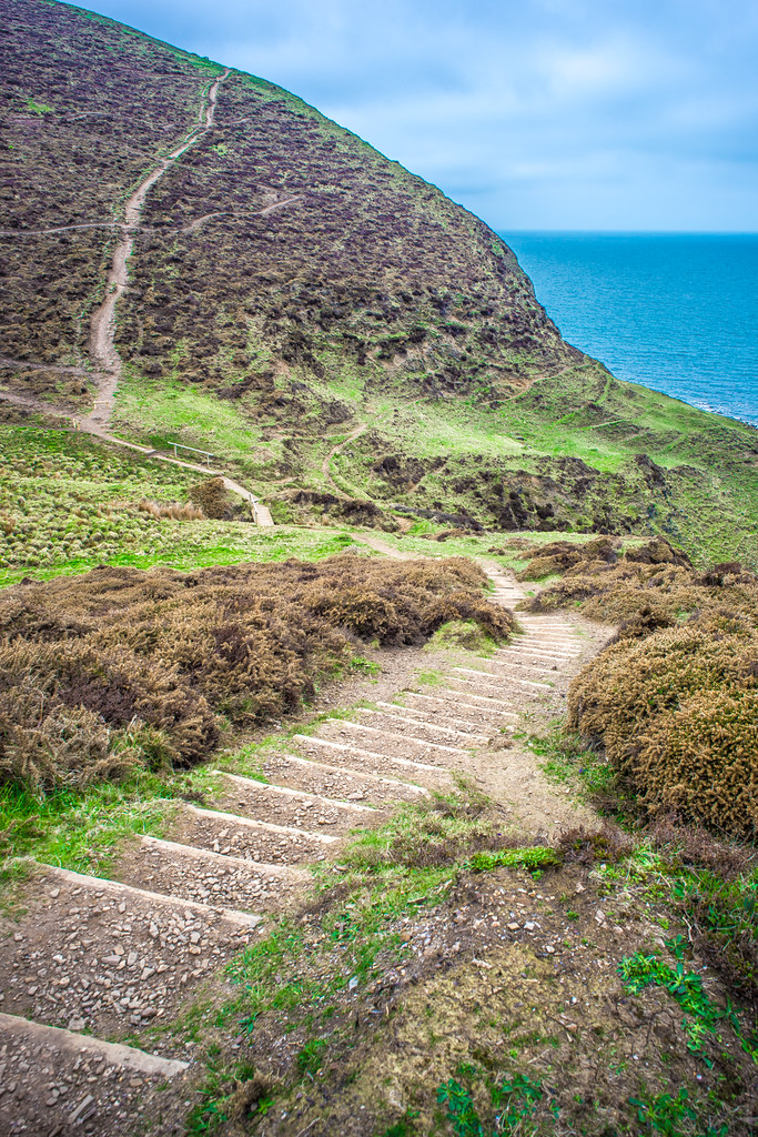 High cliffs, Crackington Haven, Cornwall, United Kingdom picture