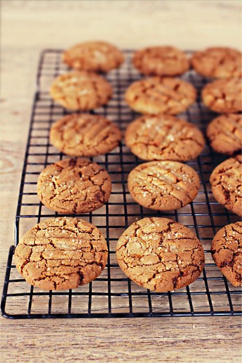Gingernuts #1
