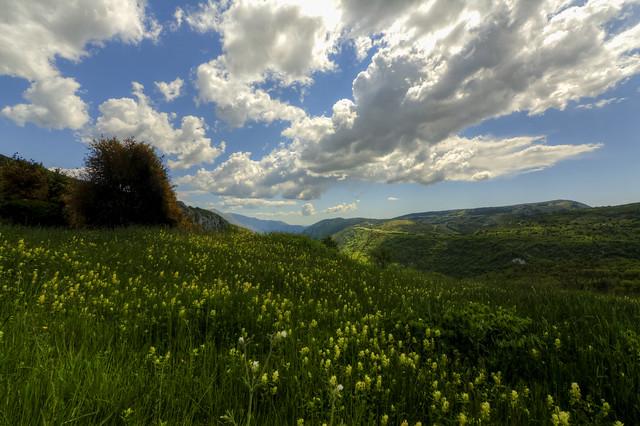 paysage des Alpes Maritimes