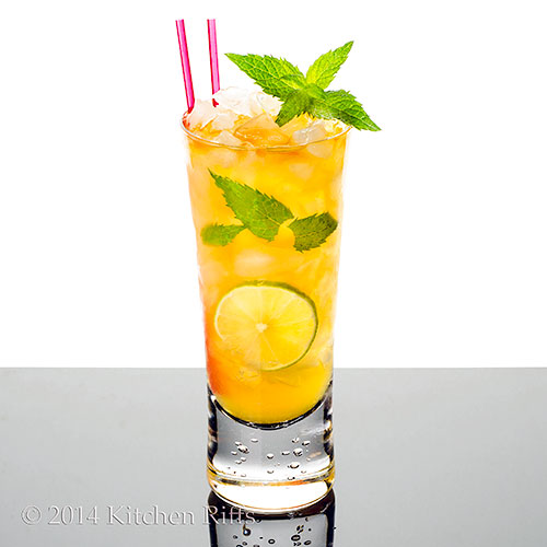 Queen's Park Swizzle Cocktail in tall glass with mint garnish