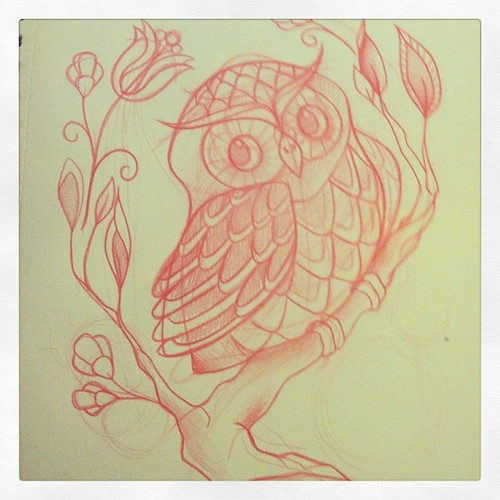 Owl Progress