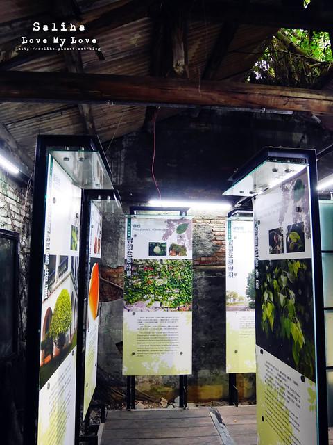 台南一日遊景點推薦安平樹屋安平老街 (16)